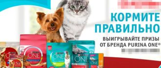 Акция Purina One в Ашан