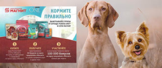 Акция Purina One в Магните